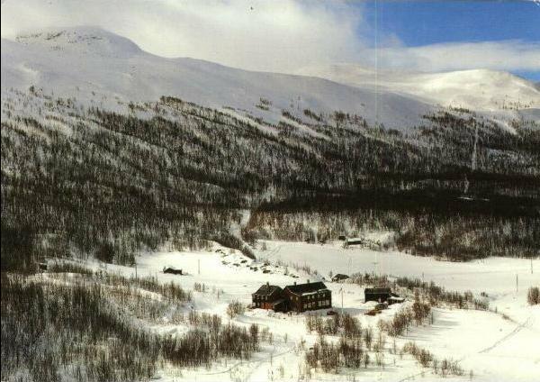 Adresse jøndalen høyfjellsseter n 3632 uvdal